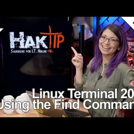 Using the Find Command! Linux Terminal 201
